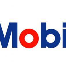Mobil SHC 630 vendita online - A F  PETROLI